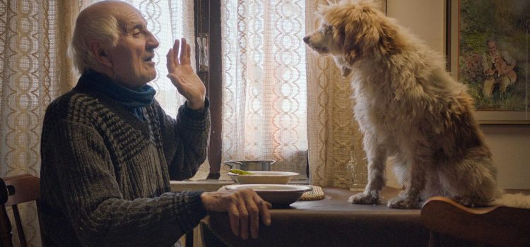 'The Truffle Hunters' Fascinating Look at Eccentric Elders and Their Beloved Trained Dogs