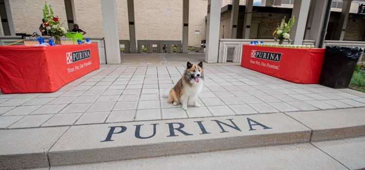 The Muny Announces Naming of Broadhurst Pavilion and Purina Plaza
